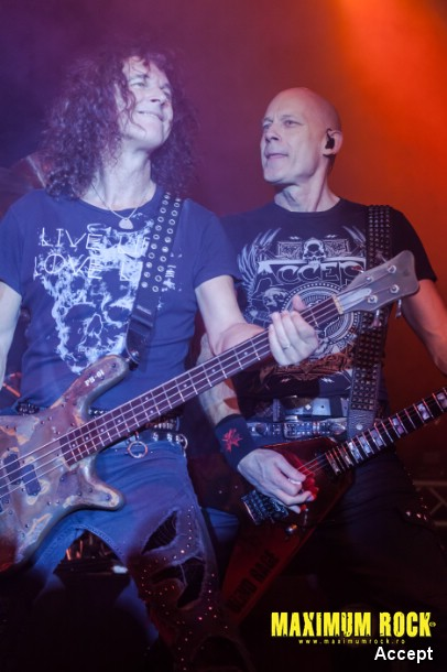 Accept  IMG_4319