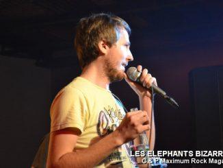 Picture_174_Les_Elephants_Bizare