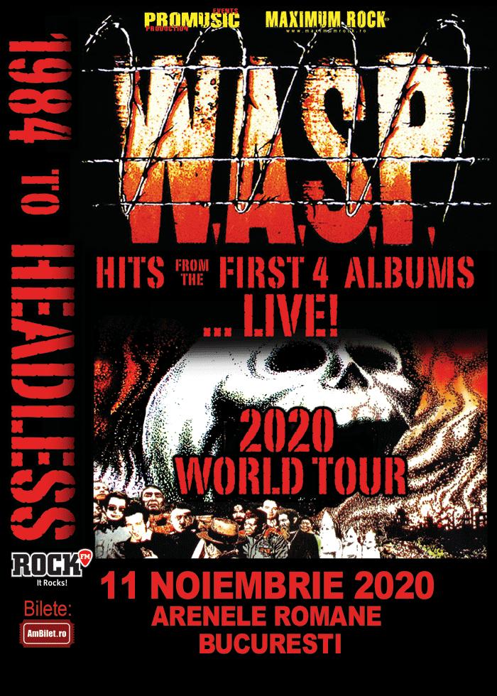 Wasp 11.11.2020